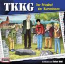 TKKG 194 - Der Friedhof der Namenlosen