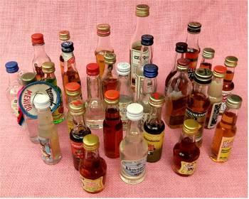 29 Miniatur-Fläschchen - Martini , Küstennebel usw. 1980er Jahre
