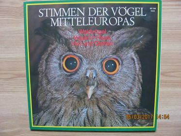 Dr. Michael Schubert – Stimmen Der Vögel Mitteleuropas