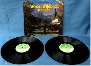 Wo der Wildbach rauscht - Volkstümliche Hits - Doppel LP